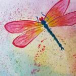 Rainbow dragonfly